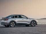 Audi trotseert uitdagend jaar met robuuste prestaties