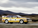 Audi viert 40 jaar quattro